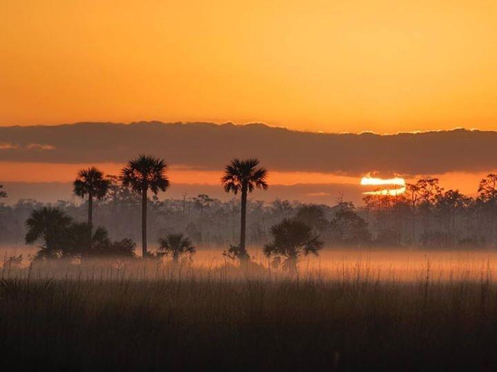 Everglades at Sunrise_2016